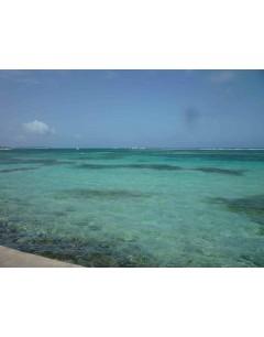 Week  residence sea